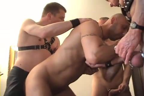 homo-stripped-Groupsession-Part2