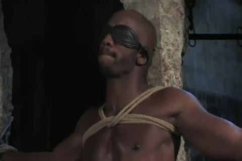 darksome master With White slave