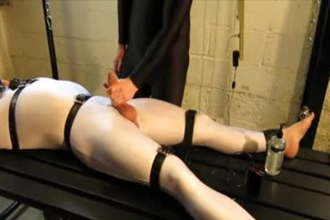 Our Live-in Pup Zathin Loooves To Be Tickled type-of. So We Put Him In smth Stretchy, thonged Him Down, And Decided To watch How Much that lad Could Take! In Part 1, We Added A Sound-activated Electro Plug Just To Keep Things Interesting. Here In P