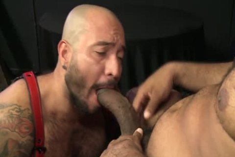 Begging For Daddys enormous black Bent cock