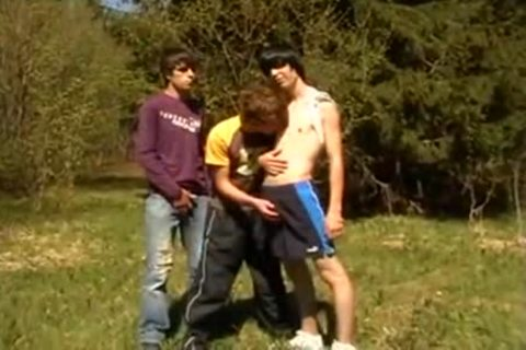 three-some twinks On First Time Barebacking Outdoor