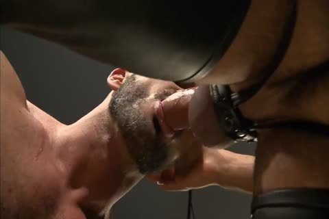 horny Muscle Leathermen plow