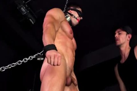 Muscle bound two