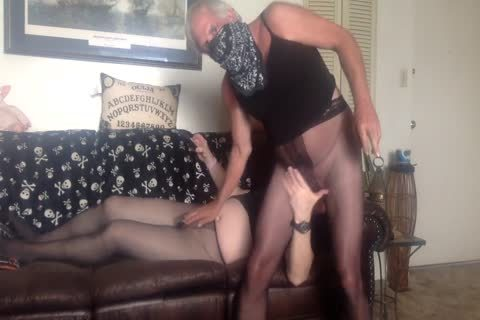 pantyhose Buds Hose Humping In Sheer darksome