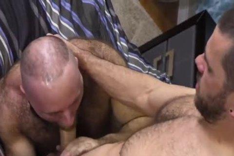 bushy Teddy Bear nailing massive Cocked Hunk