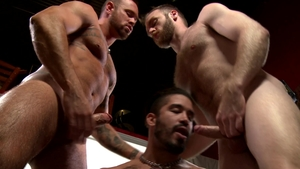 Men Over 30 - Caucasian Trey Turner is so muscled gay