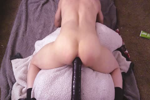 Pov From The Back butthole